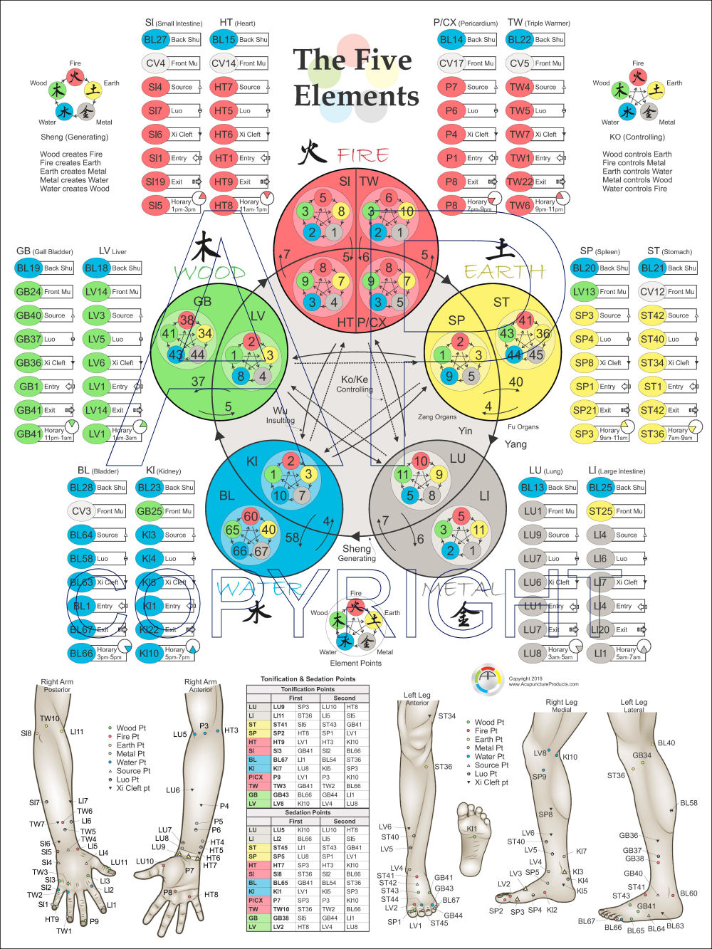 Five Elements Acupuncture Points Poster