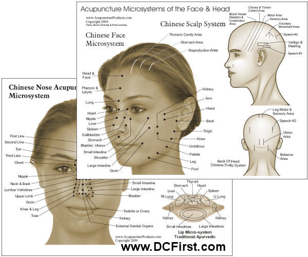 facial acupuncture points chart. Black Bedroom Furniture Sets. Home Design Ideas