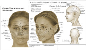 Acupuncture and tcm charts click to view ccuart Gallery