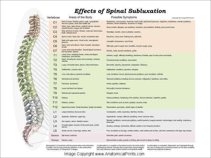 Effects of Spinal Subluxation Poster